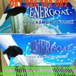 Jual Susu Kambing Energoat Di Pekanbaru