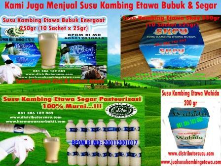 Pusat Susu Kambing Etawa Medan