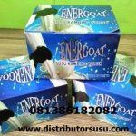 Jual Susu Kambing Etawa Energoat Di Padang Sidempuan